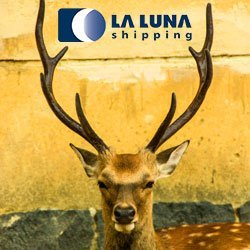 la-luna-shipping-laluna.coop-international-transport-courier-freight-cargo-carga-internacional-transporte-japon-japan-feature