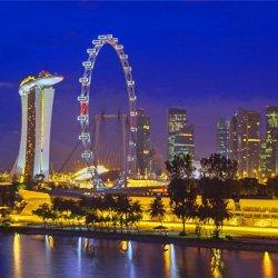 singapur-singapore-freight-cargo-carga-aerea-mar-maritima-puerto-negocios-economia-tigre-asia-sudeste-south-east-la-luna-shipping